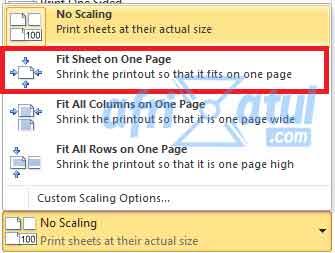 cara print format excel agar tidak terpotong